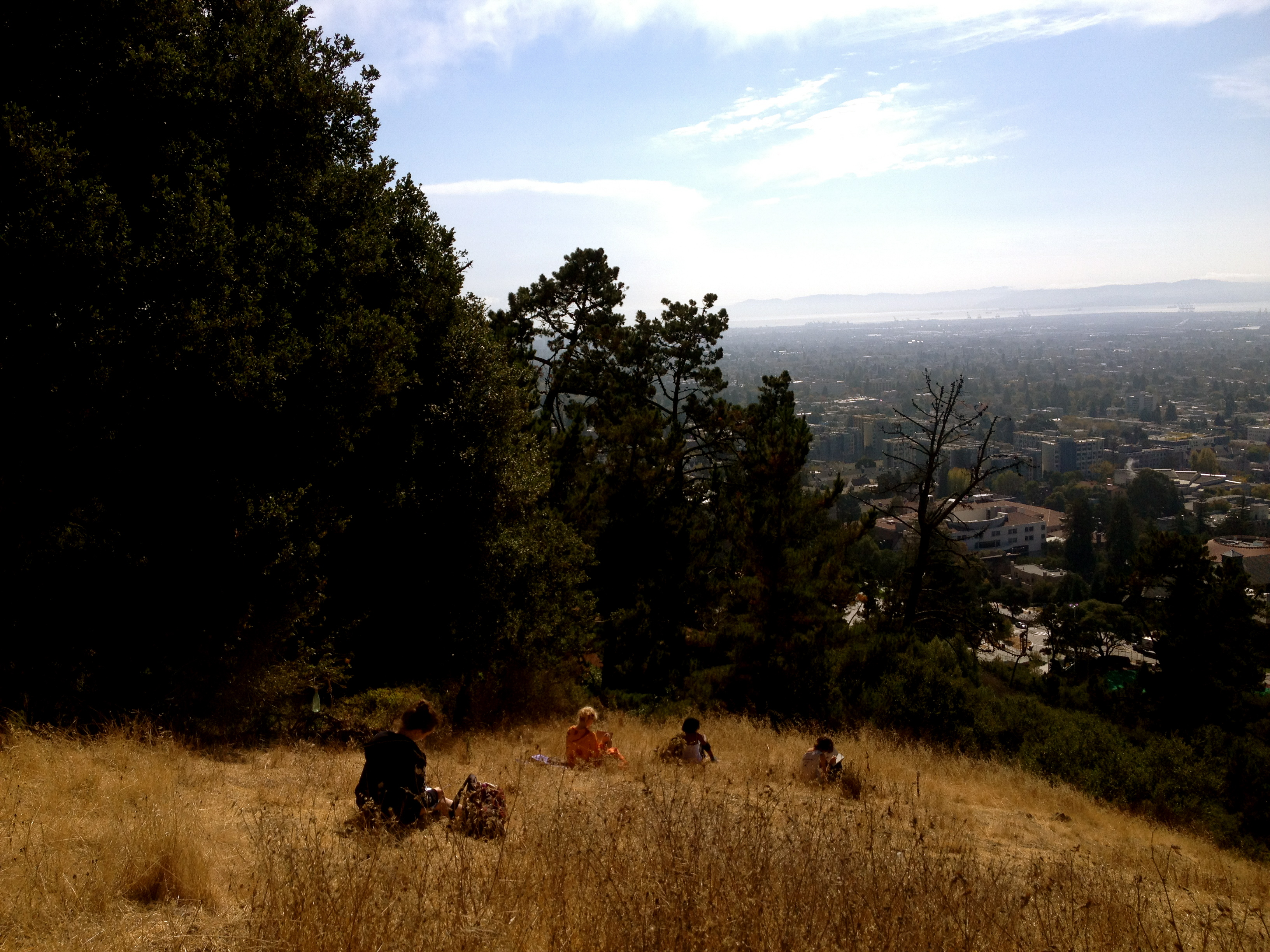 Classmates writing in the Berkeley hills